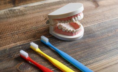 石神井公園駅近くで入れ歯・義歯に対応しているおすすめの歯医者さん3選