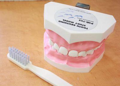 みやうち歯科 武蔵野市 予防歯科の写真