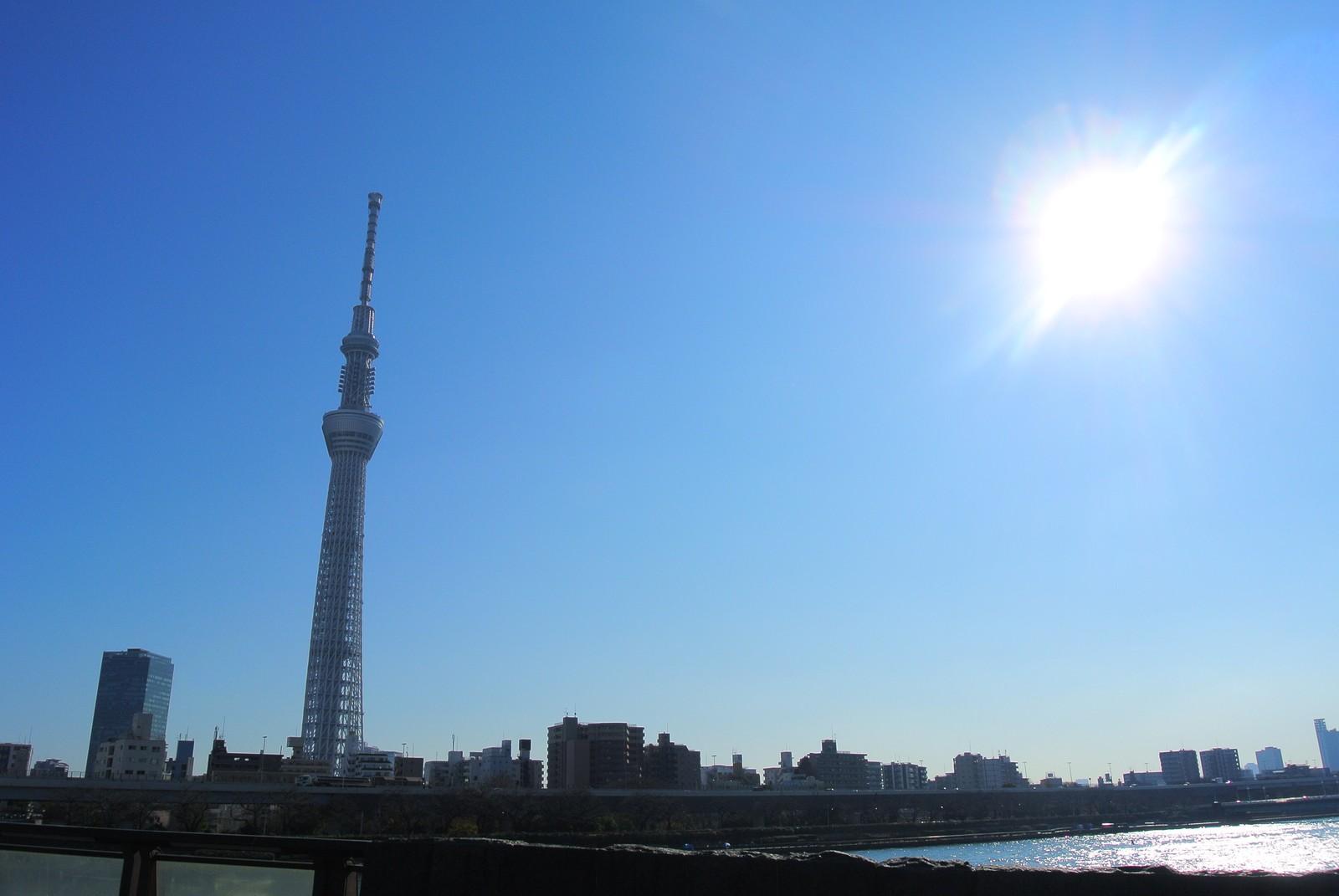 塔 ライブ の カメラ 太陽